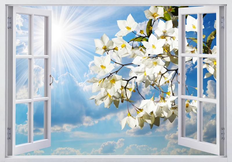 Tranh kính 3D cửa sổ